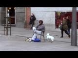 Криштиану Роналду устроил пранк в центре Мадрида, а люди его даже не узнали .(