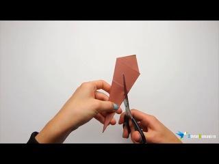 Как вырезать снежинку из бумаги. Вырезание снежинок красивая схема
