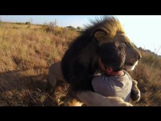 Новый мир Дружба людей и животных