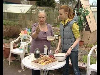 Луковицы гладиолусов -