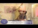 Andhim Super Flu Mr Bass Official Video