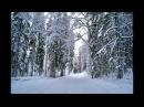 Чухломский район Костромская область Зимние пейзажи Терема