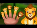 Finger Family Lion ChuChu TV Animal Finger Family Songs Nursery Rhymes For Children