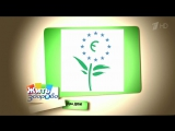 Чистим дом экологичными средствами. Программа «Жить здорово!» с Еленой Малышевой, эфир от 07 12 2015
