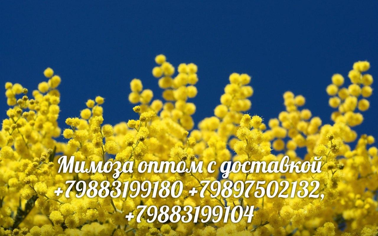 glucophage xr 1000 mg dawkowanie