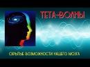 Тета-волны: скрытые возможности нашего мозга