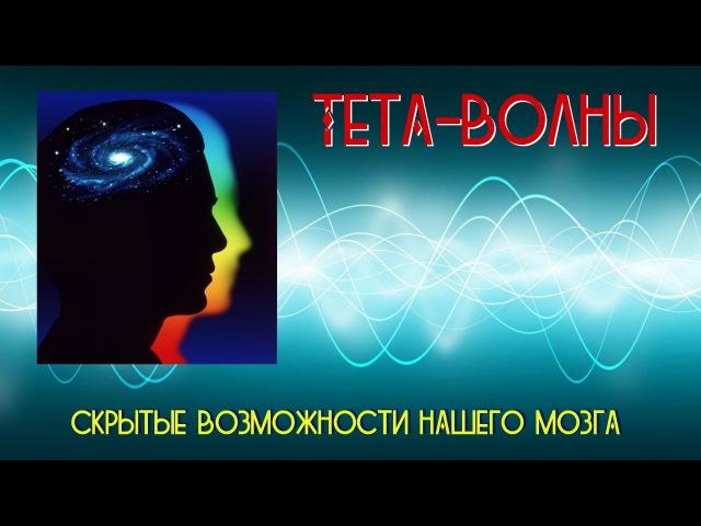 Тета волны скрытые возможности нашего мозга