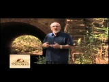 The Impact of Evolutionism on American Christians - Dr. G. Thomas Sharp