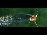 Микроджиговая рыбалка и сом.