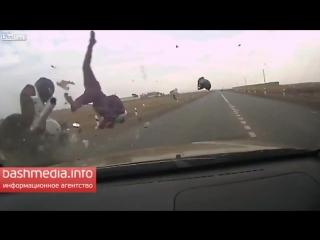 Crash moto (vine)