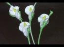 Buttercream Calla Lilies / Cake Decorating