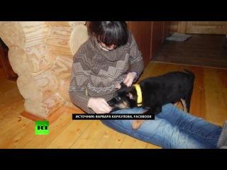 Студентка МГУ Варвара Караулова созналась в попытке примкнуть к ИГ