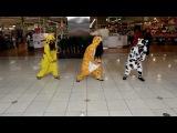 [ Кигуруми ] Gangnam Style at Chadstone for Movember 2012