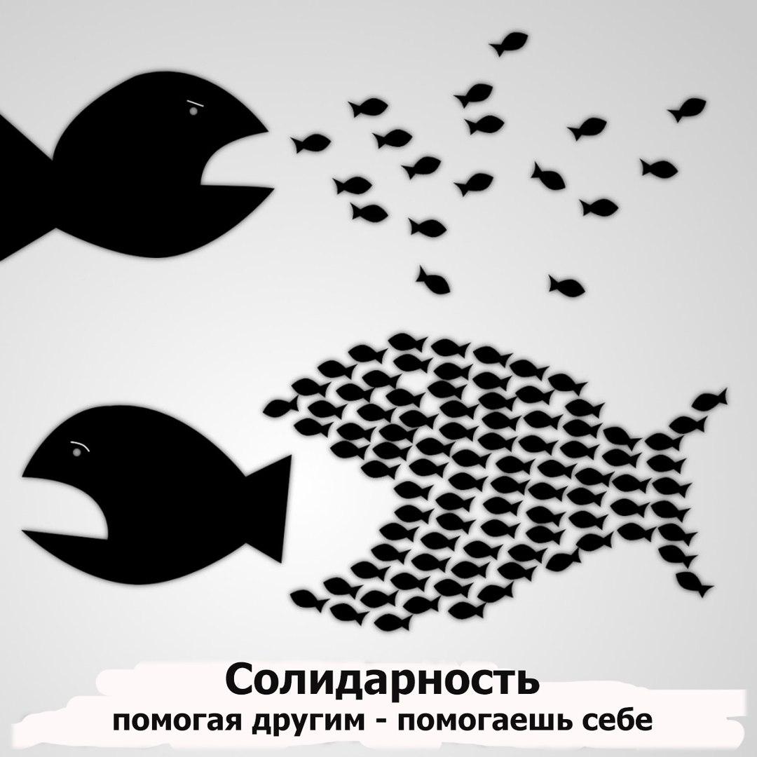 Студенческая Инициатива Воронеж ВГУ  - профсоюз студентов активисты группа