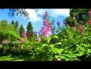 «УЛИЦА ЗОСИМОВА» (ЧАСТЬ ПЕРВАЯ)  под музыку  Юрий Антонов - Родные места (минус). Picrolla