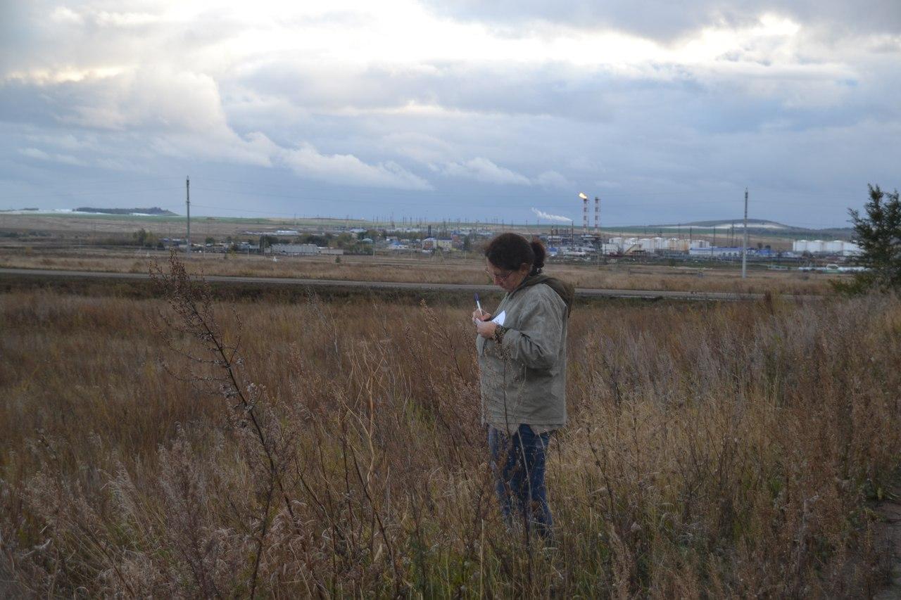 Фиксация ботанических особенностей нарушенных ландшафтов