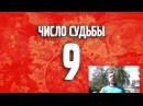 Число судьбы 9 Нумерология