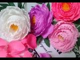 Peony paper flower - H