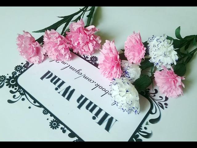 Carnation paper flower - Làm hoa cẩm chướng giấy nhún