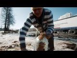 Дневник дальнобойщика - 2 серия 3 сезон 27 серия Дорожный арсенал