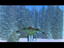 Freestyle skiing double and triple backflips in the 1960s at Vail