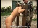 Военные заковали пленную в кандалы и выпороли (paingate, порка плеткой)