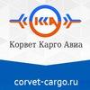 Corvet Cargo Avia