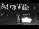Thug Life - Guy chugs booze during a DUI traffic stop