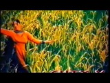 http://www.dailymotion.com/video/x2drwua_chooriyan-pakistani-punjabi-full-movie-saima-moammar-rana-shafqat-cheema_music