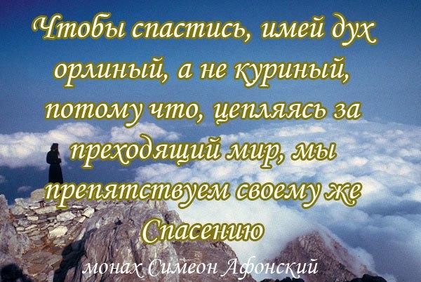 Как приготовить православные статьи о смысле жизни представленная