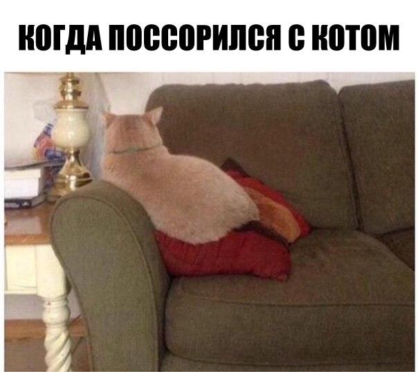 EOVFYhkxcMM - Русский поехал на машине в Грузию...