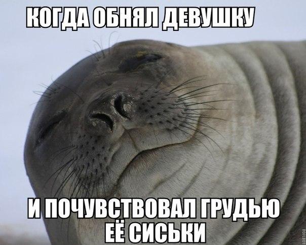 WtHH0dl0WUw - Русский поехал на машине в Грузию...