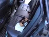 Задержание подозреваемых СОБРом в Камышине. Съемка МО МВД