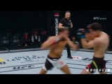 Mairbek Taisumov / LAST UFC FIGHT NIGHT HL