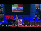 Докт. Бо Лотто - оптические иллюзии показывают, как мы видим / TED