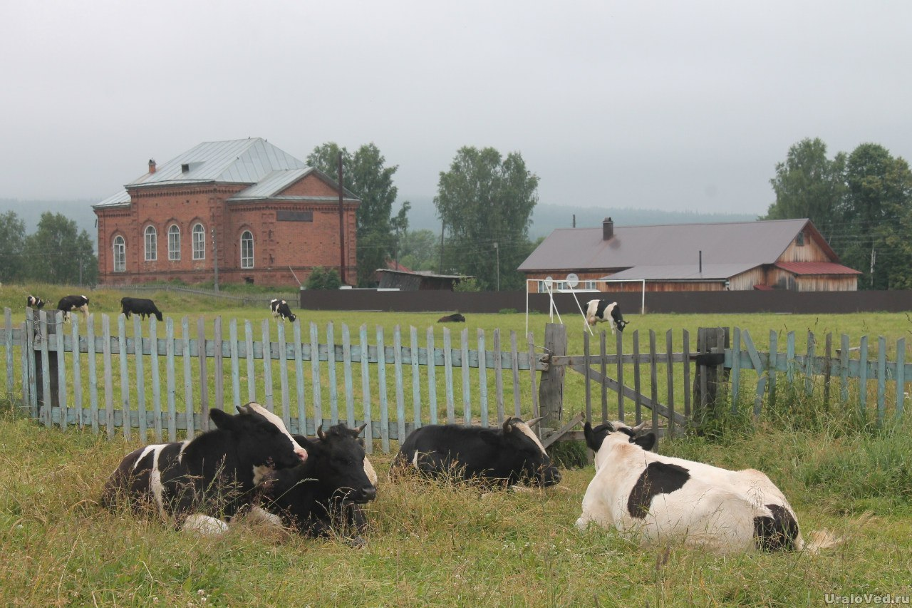 Село Висим