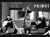 Paris Combo - Le Roi De La Foret (live 2002)