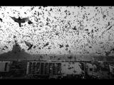 Yann Tiersen - La Dispute