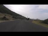 К велогонке присоединился страус