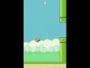 Mlg Flappy Bird