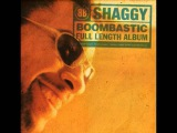 03 Something Different (Ft Wayne Wonder) Shaggy