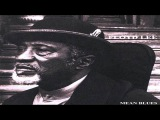 Floyd Lee Band ~ Mean Blues (2008)