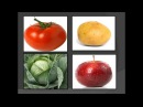 Дидактическая игра для детей найди лишний овощ