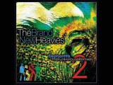 The Brand New Heavies - Boogie (Eric Kupper Mix)