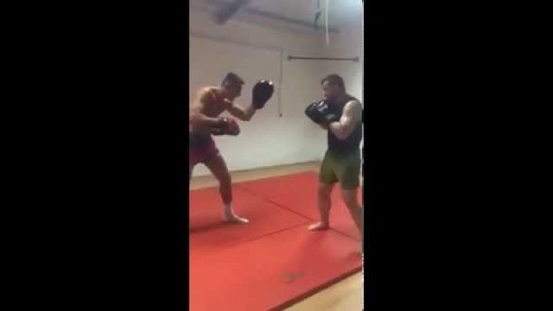 Mirko Cro Cop Filipovic back to training
