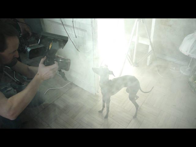 Eledi Grace Diva music clip backstage