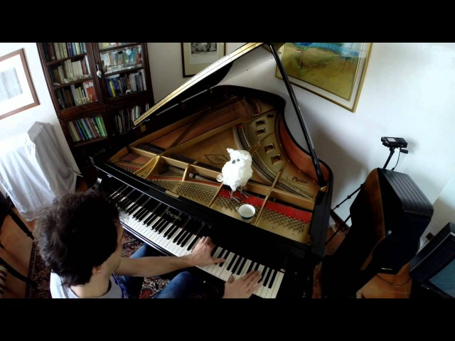 Edoardo Brotto Happy Birthday in Chopin style Piano Improvisation