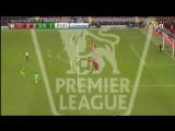 Гол Адама Джонсона. Ливерпуль 2-1 Сандерленд