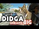 Didga Dreams BIG - Cats Amazing Trick Compilation