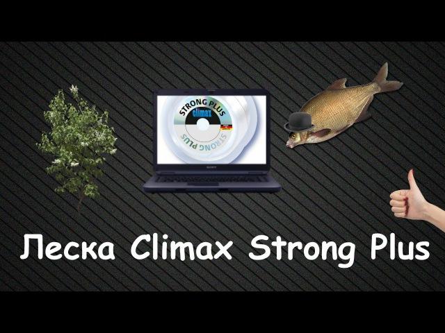 Леска Climax Strong Plus Конкурс №1